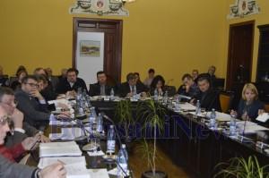 consiliul local botosani