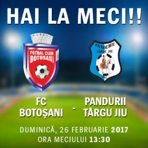 meci FC Botosani- Pandurii Tg Jiu