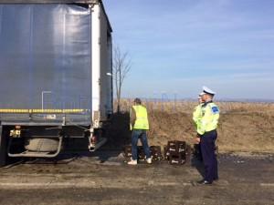 sticle bere cazute de drum din camion 3