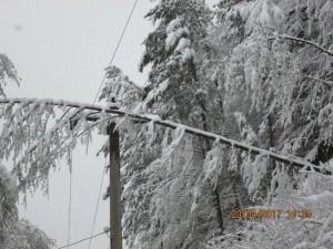 retele electrice afectate de zapada2