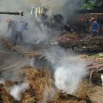 incendiu furaje prajeni botosani
