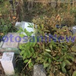 morminte distruse cimitirul eternitatea botosani
