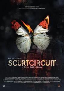 scurtcircuit_afis