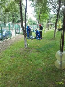 spatiu animale companie parcul curcubeului 2